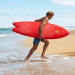 laird hamilton surfer